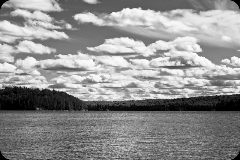 Bates Island Algonquin Park Images